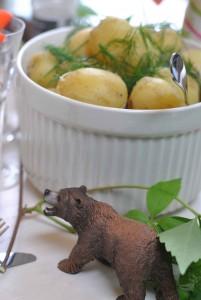 potatisbjörn