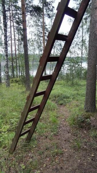 Stegen