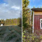 Två bilder, en föreställer en äng i tidig frost och den andra bilden föreställer ett gammalt hus.
